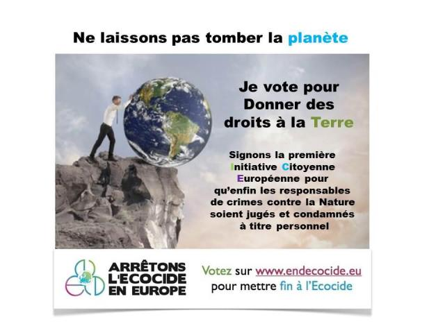 © Endecocide