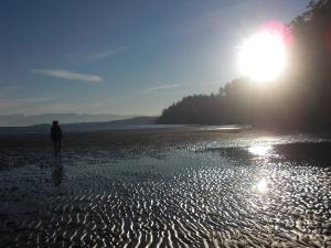 Ile de Vancouver ©  Échos verts
