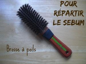 No Poo- Pour répartir le sebum- Brosse à poils- échos verts