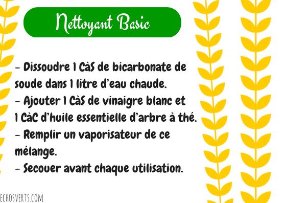 Nettoyant maison basic- copyright- echos verts