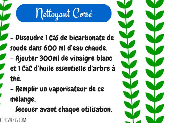 Nettoyant maison corsé- copyright- échos verts