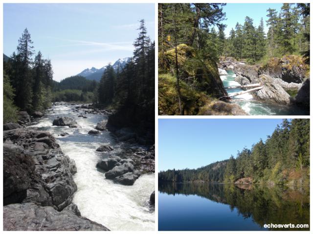 Cours d'eau- Ile de Vancouver- Copyright- échos verts