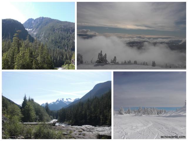 Montagnes- Ile de Vancouver- copyright- échos verts