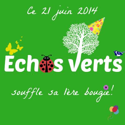 1 an échos verts