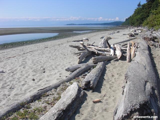 Witty's Lagoon- Vancouver Island- Copyright- échos verts