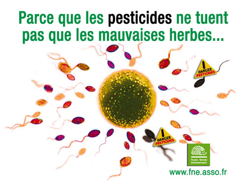 Les pesticides ne tuent pas que les mauvaises herbes