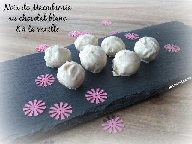 Recette noix de Macadamia chocolat blanc vanille- echos verts