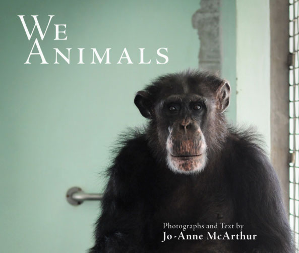 We animals Book Cover Jo-Anne McArthur