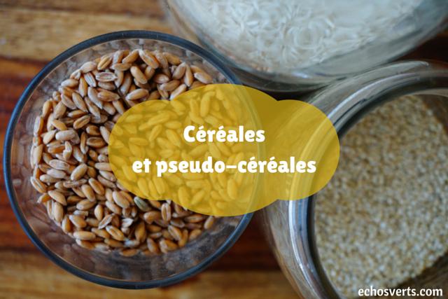 Cuisine végétalienne- les essentiels- echosverts.com