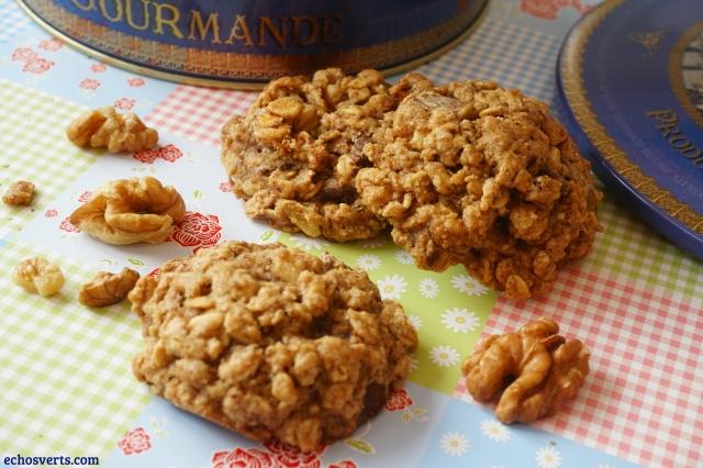 Cookies chocolat noix vegan echosverts.com