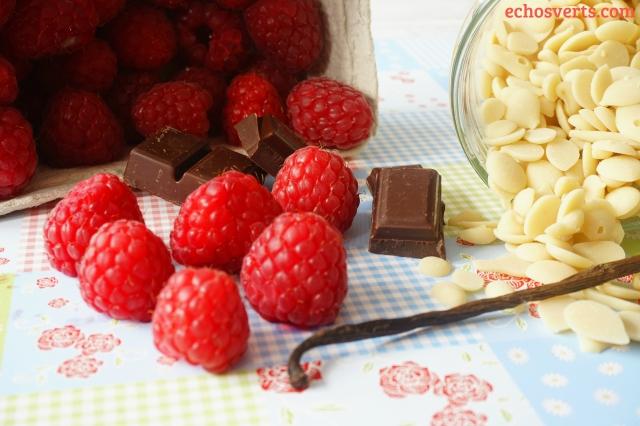 Crèmes végétales choco vanille framboise ingrédients echosverts.com