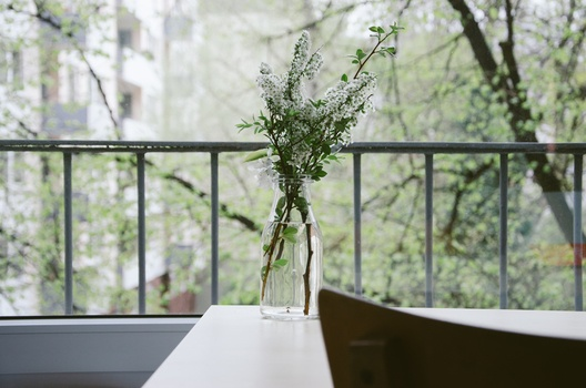 nature-flowers-table-balcony-medium