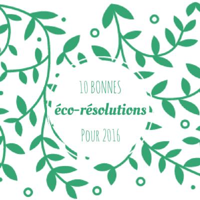 10 idées de bonnes éco-résolutions pour 2016 (1)