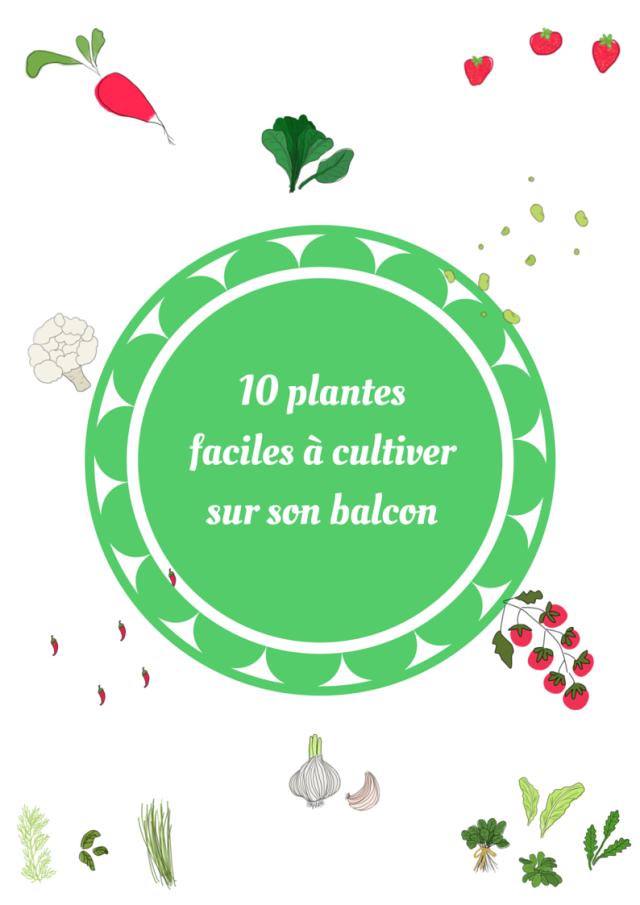 10 plantes faciles à cultiver sur son balcon