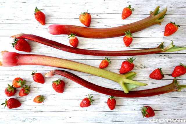 rhubarbe fraises echosverts.com