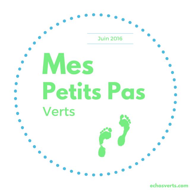 Mes petits pas verts Juin 2016 echosverts.com
