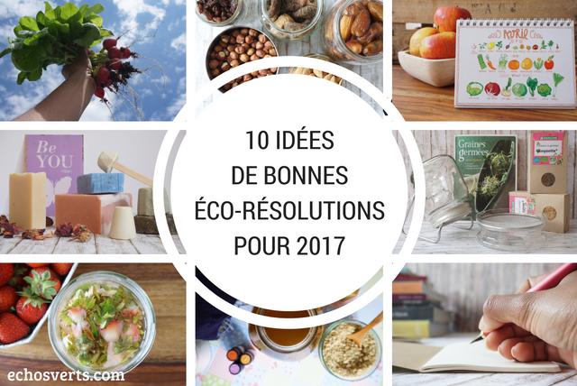 10-idees-de-bonnes-eco-resolutions-pour-2017